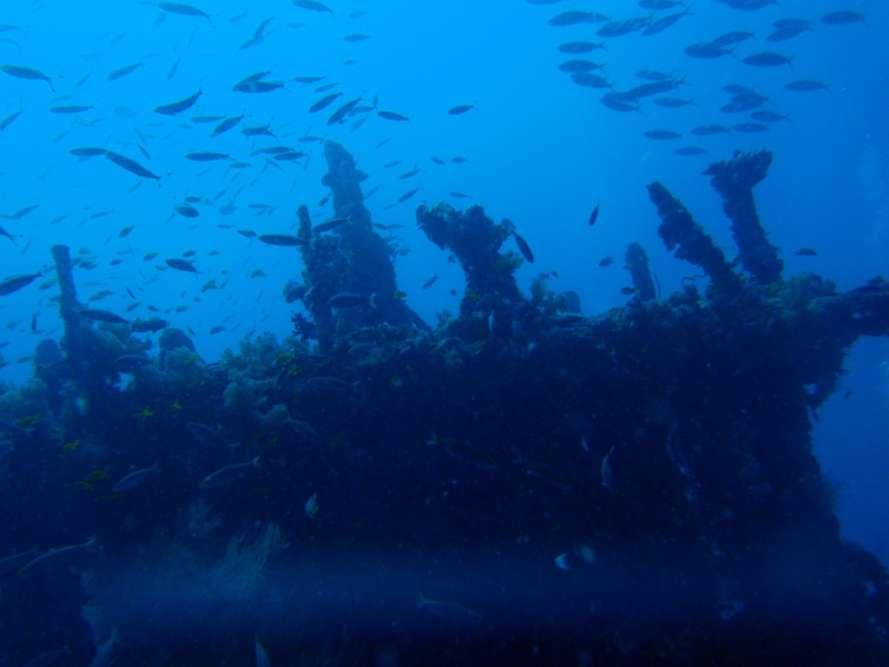 Wreck of the Maldive Victory