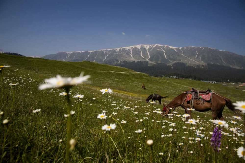5 sights to tick off in Gulmarg