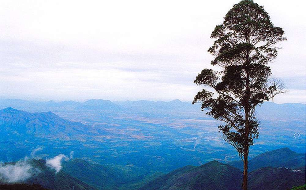 Interesting excursions to take in Kodaikanal
