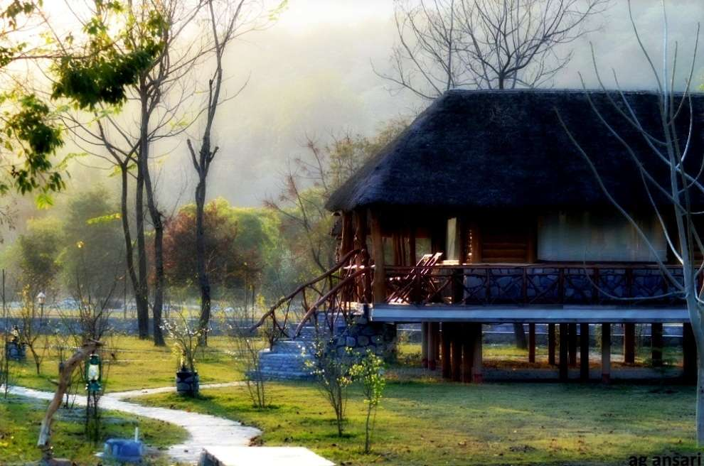 Camp Riverwild Resort