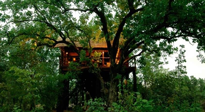 Tree House Hideaway, Bandhavgarh