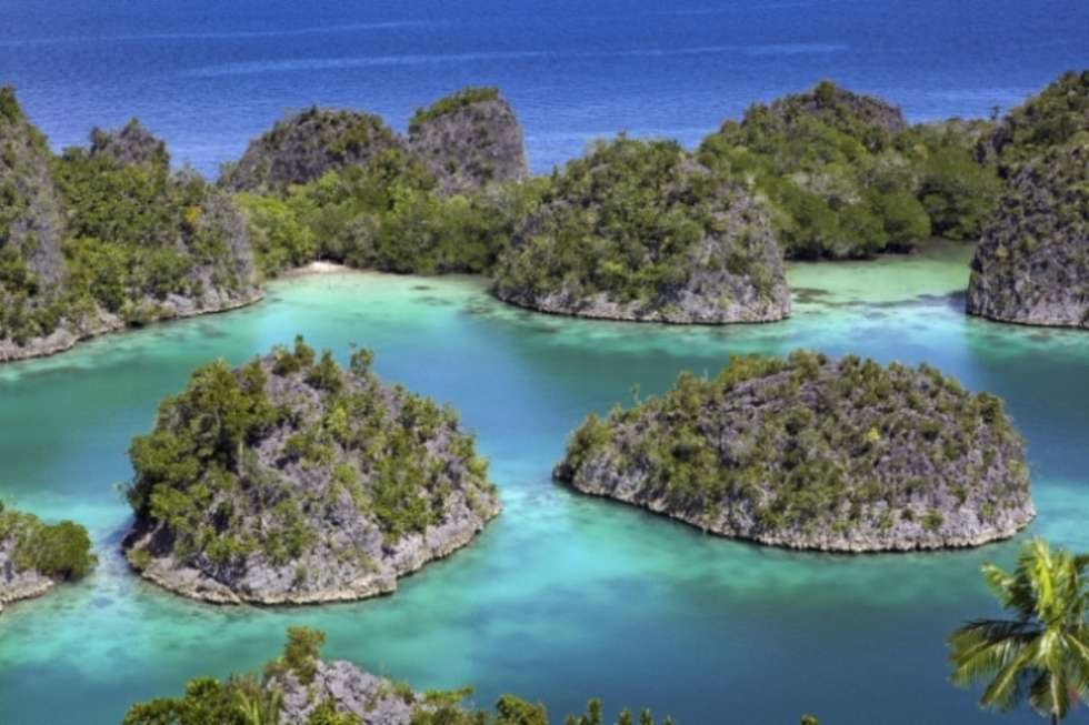 The many wonders of Raja Ampat Islands