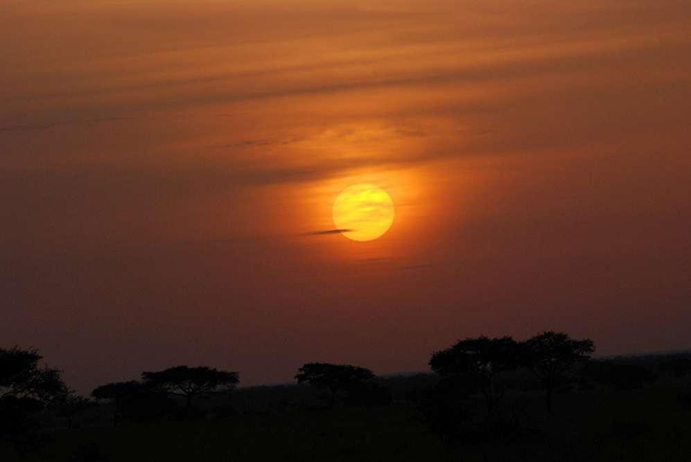 Singita Serengeti Safari