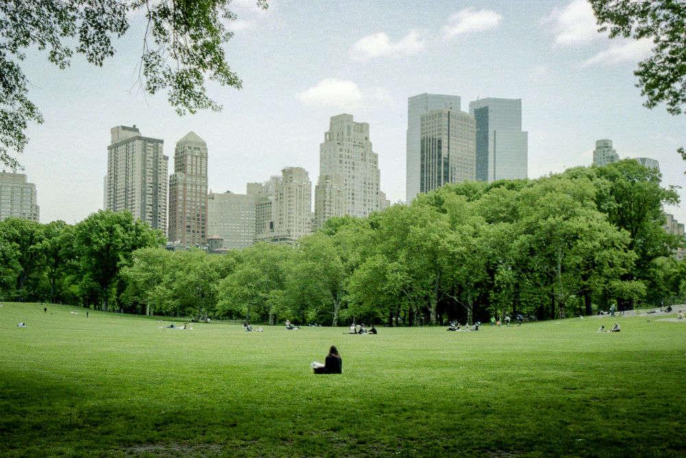 Green escape in New York