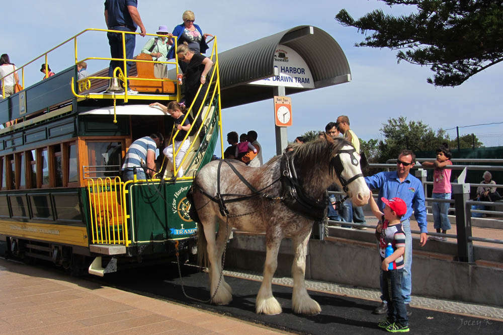 Horse-drawn trams of Victor Harbor