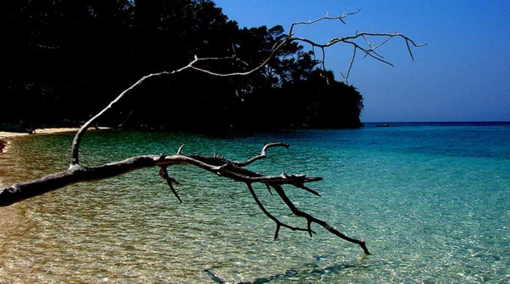Wandoor & Mahatma Gandhi Marine National Park