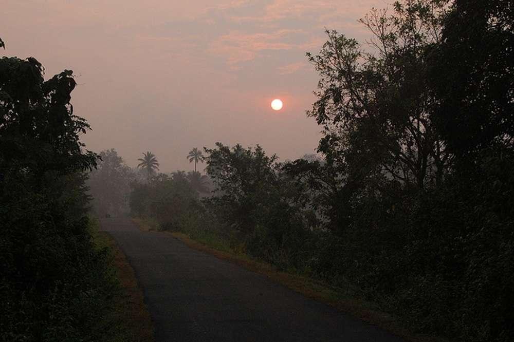 The wild side of Goa
