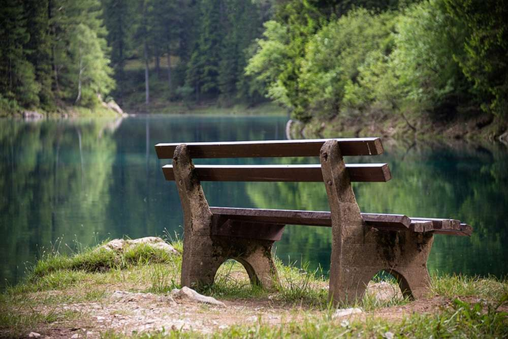 Grüner See: a park that turns into a lake during summers