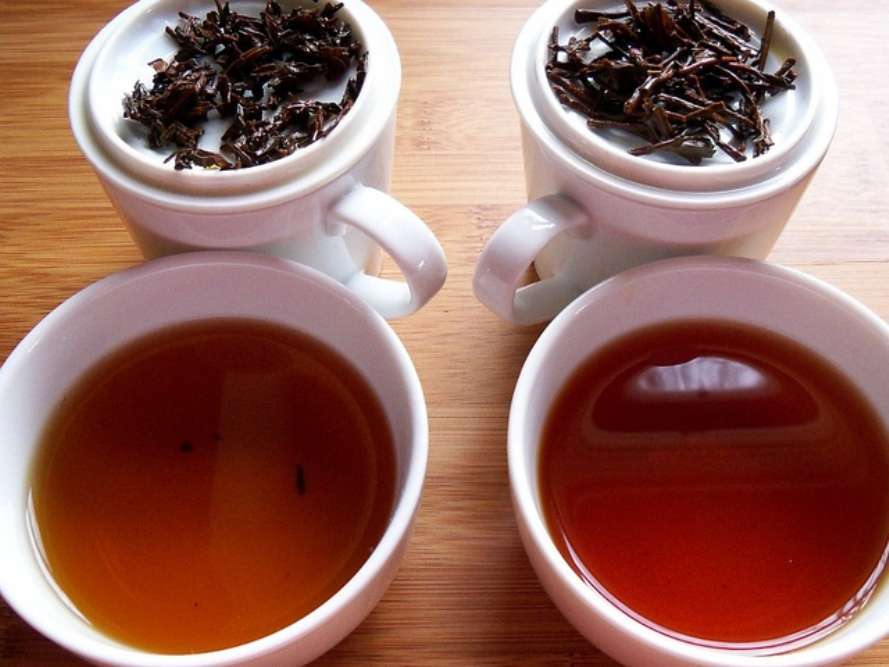 Highfield Tea Estate