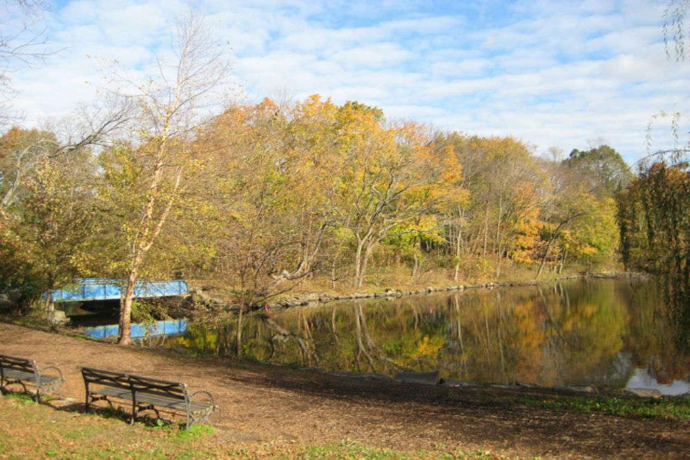 Van Cortlandt Park: a stunning green space in New York City
