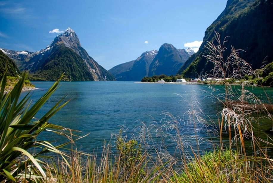 New Zealand's best nature and wildlife experiences
