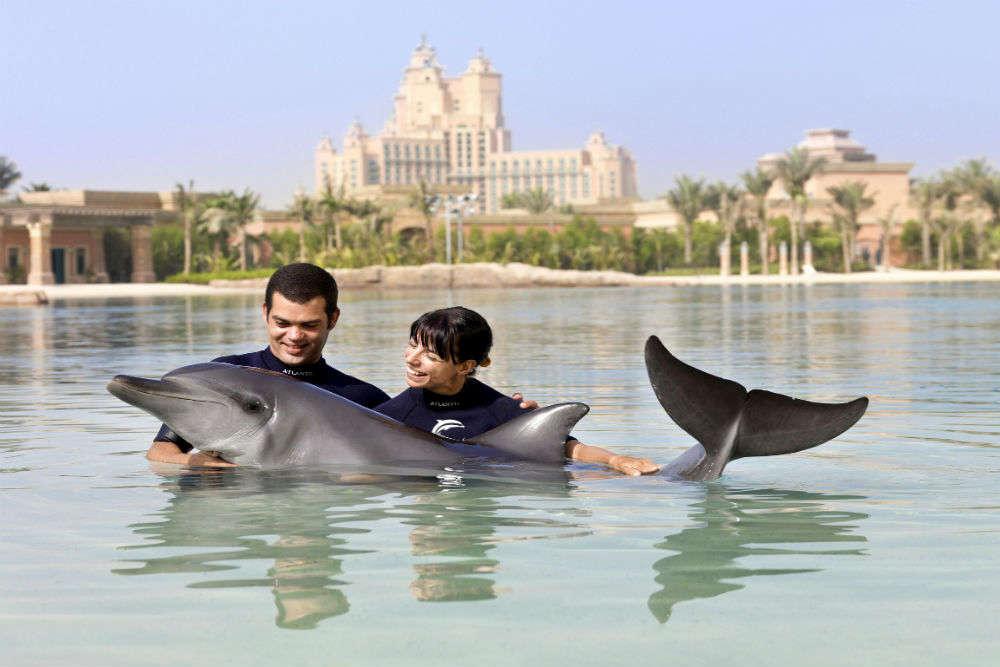 Dolphin Bay—Atlantis, The Palm
