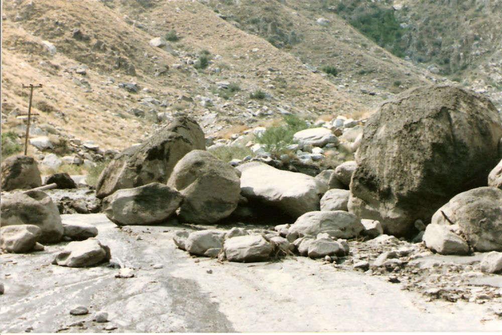 Wadi al Gamal Nature Reserve