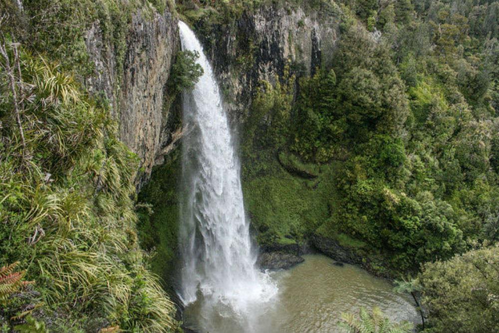 Great short walks in the Hamilton & Waikato region