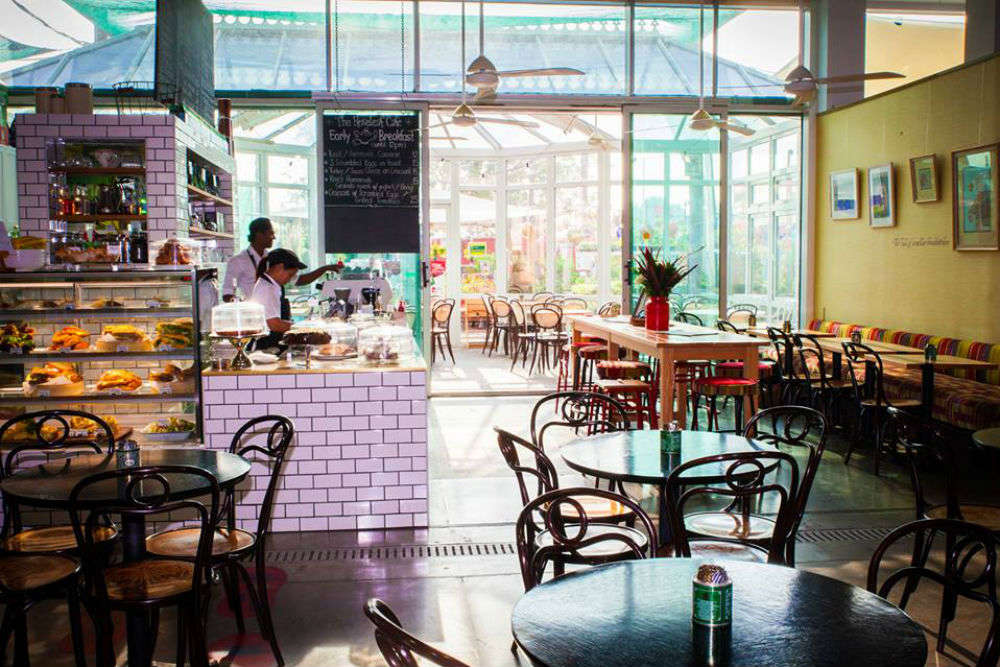 Dubai travels—the best of cafes and eateries