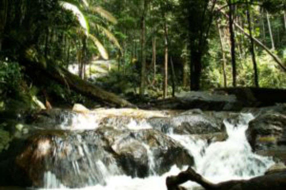 Kanching Rainforest Waterfalls
