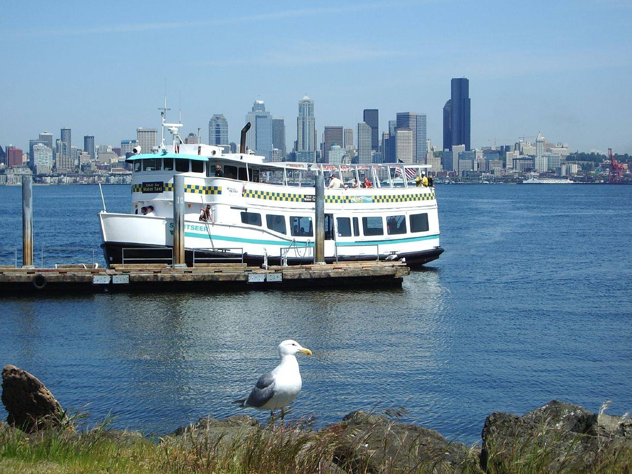 Water Taxi and Ferry Services