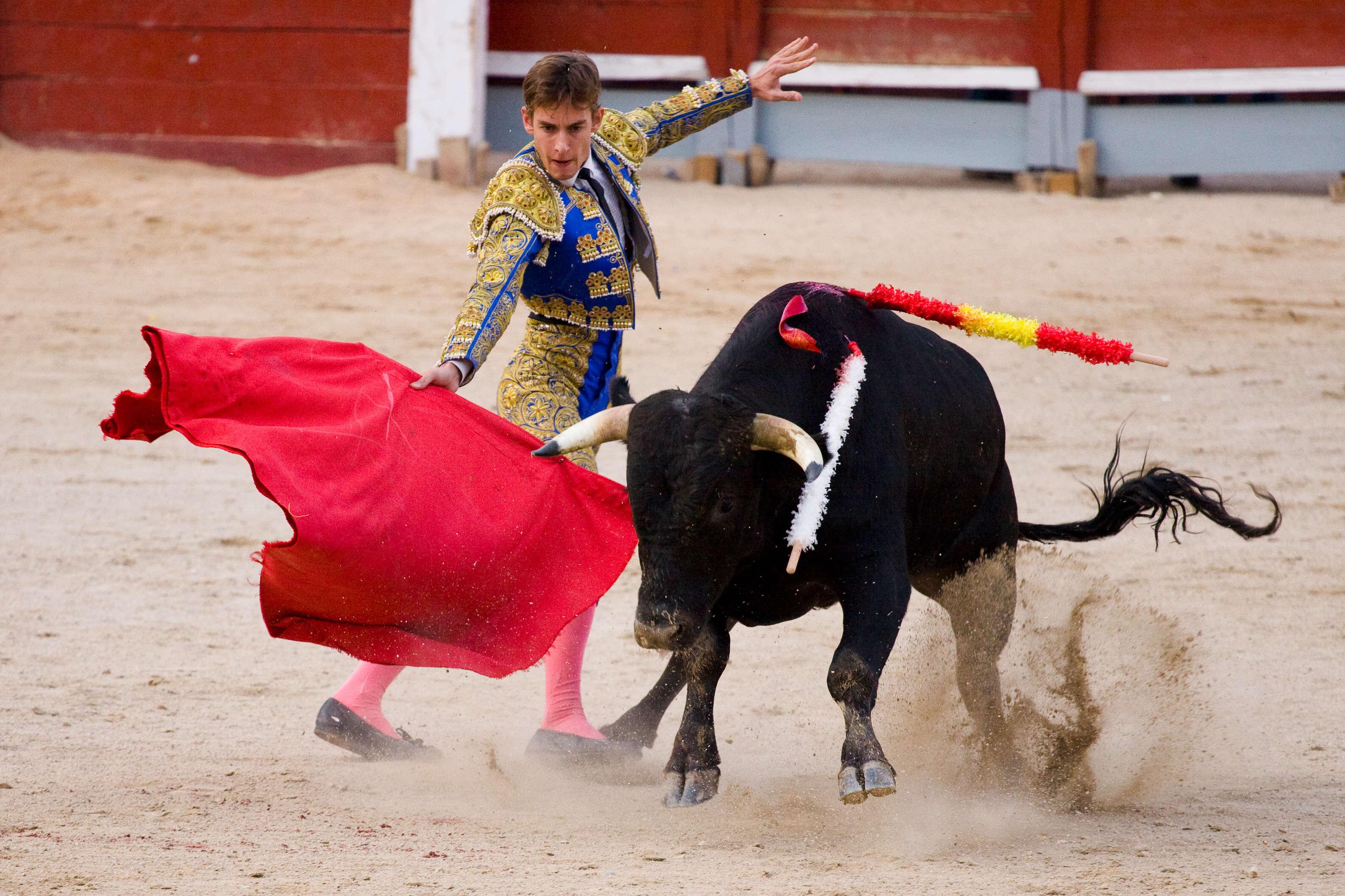 Bullfight at Plaza de Toros Las Ventas