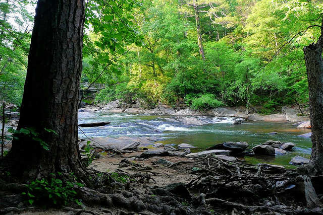 Chattahoochee River National Recreation Area