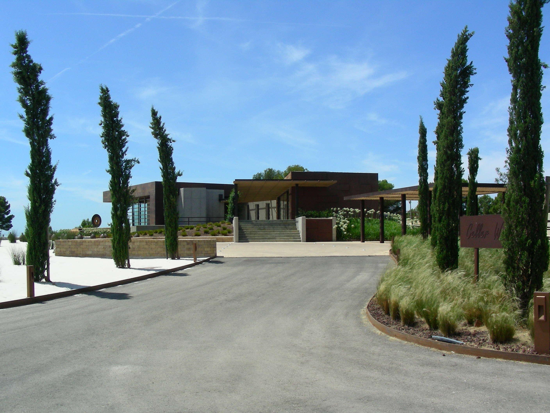 Bodegas Torres Vineyard