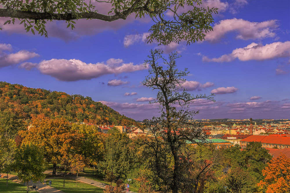 Wander off the tourist trail in and around Prague