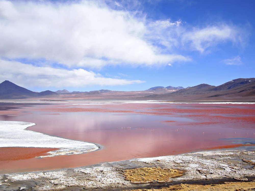 Laguna Colorada: The Red Lagoon of Bolivia