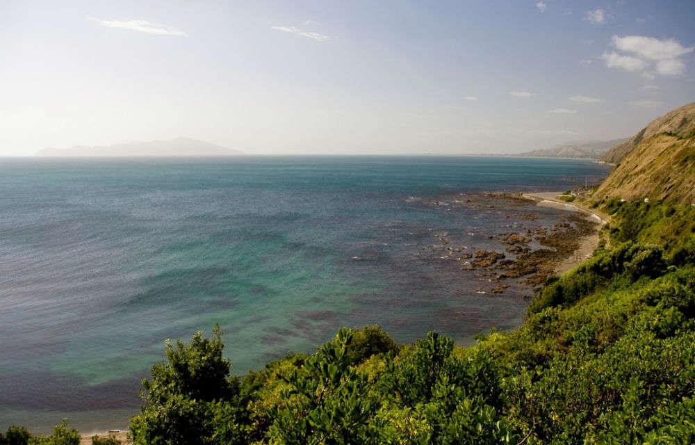 10 must-do nature coast activities in Kapiti Coast and Horowhenua