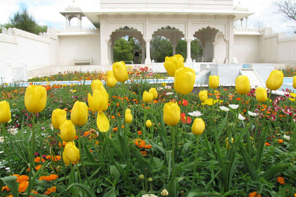 Follow a Persian carpet of flowers to Hamilton's Indian Char Bagh Garden
