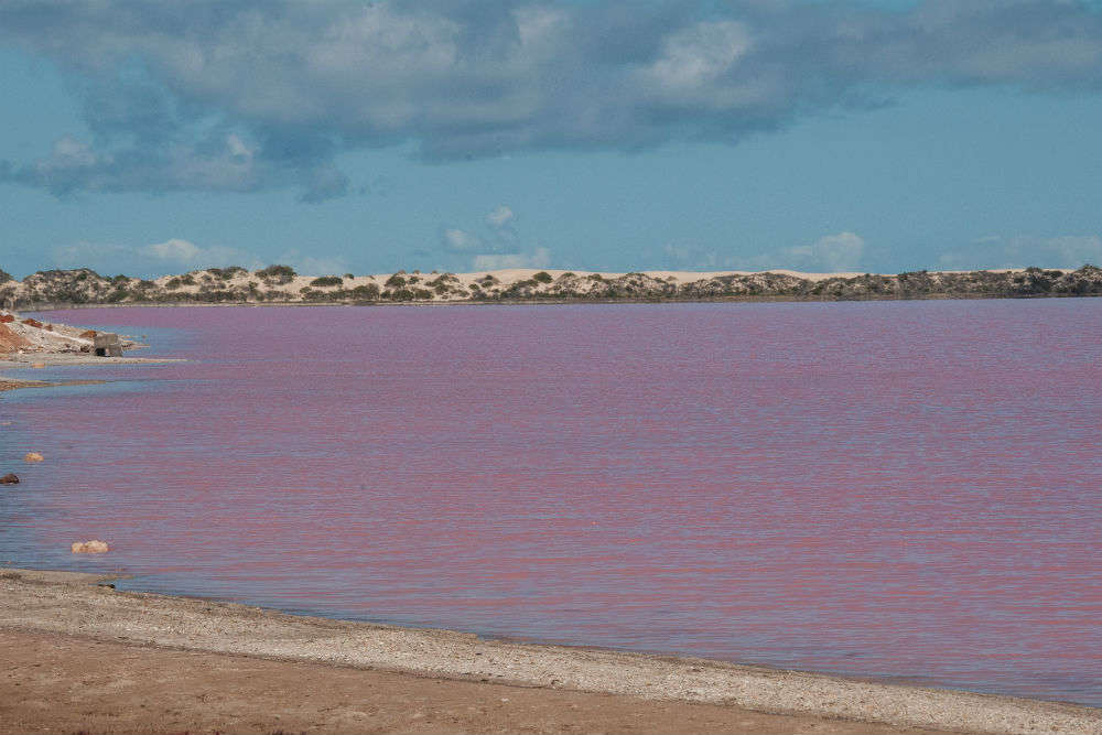 Australia's pink beauty—Lake Hillier