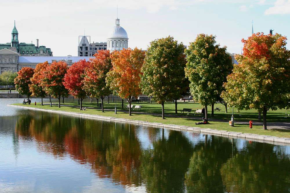 Montreal for nature lovers