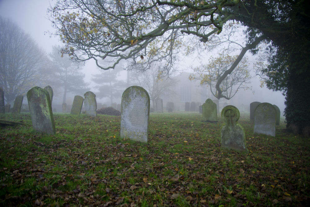 Dunedin's haunted Northern Cemetery