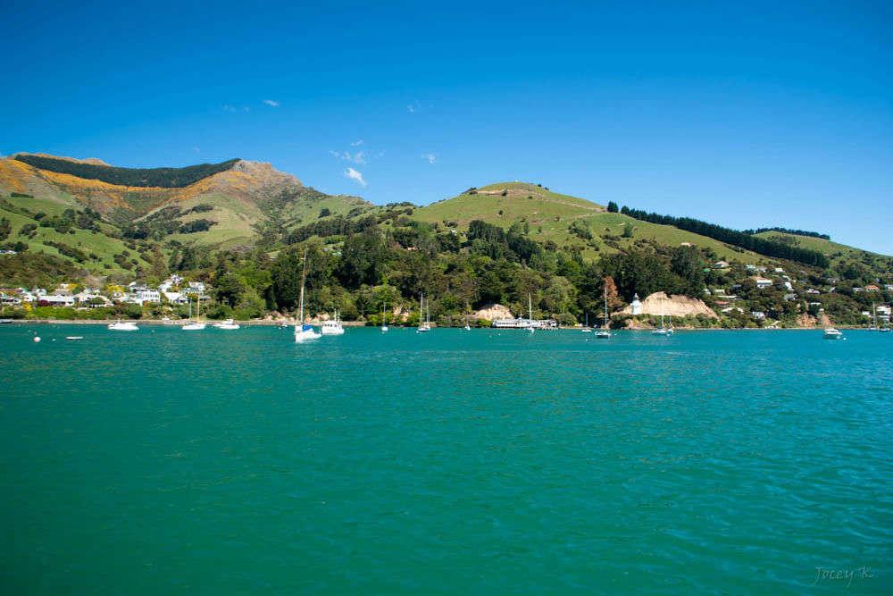 Akaroa Harbour Nature Cruises