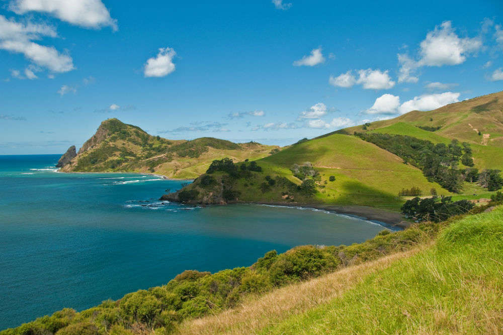 7 great beaches in Mercury Bay on the Coromandel Coast