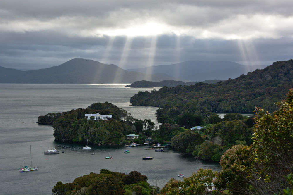 Experience the natural beauty of Stewart Island