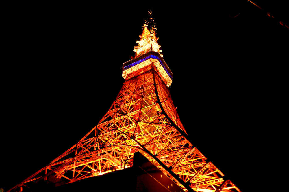 Get a bird's eye view from the Tokyo Tower