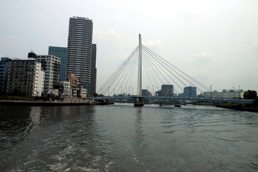 Glide along Tokyo with the Sumida River cruise