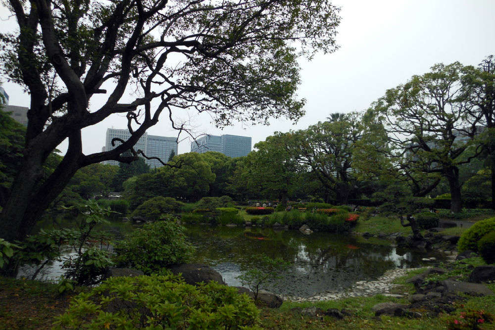 Appreciate the beauty of Hibiya Park