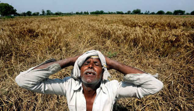 farmers suicide in india In the past 20 years, nearly 300,000 farmers have committed suicide, says india's national crime records bureau unseasonal rainfall and hailstorms in many parts of india in recent weeks have destroyed crops, putting further strain on impoverished farmers and driving many of them to kill themselves.