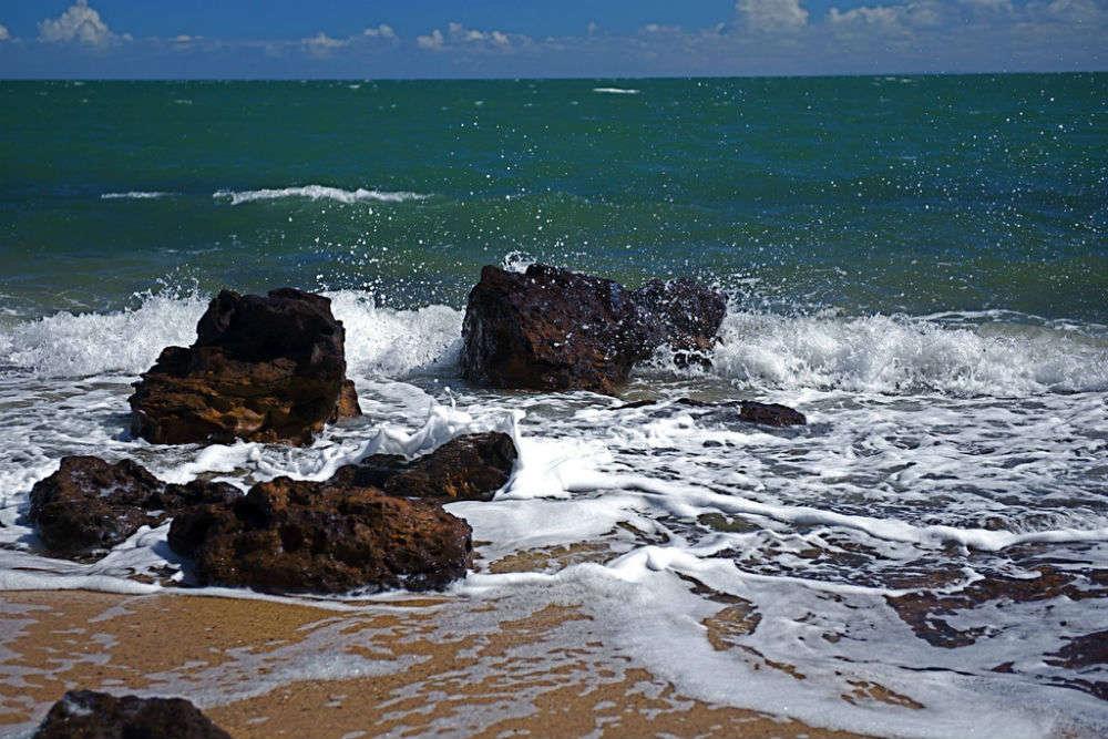 Sandringham and Black Rock Beaches