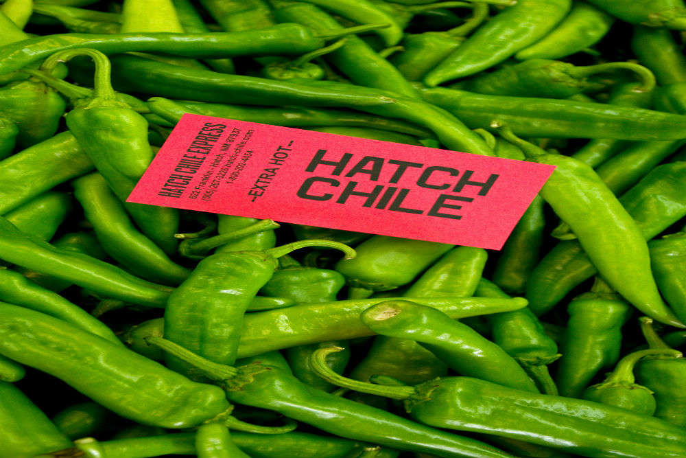 Learning what all the Hatch chile fuss is about
