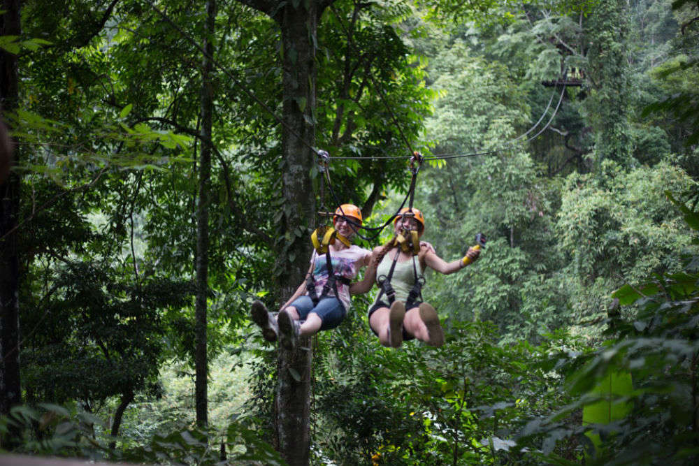 Ziplining through the Rain Forests