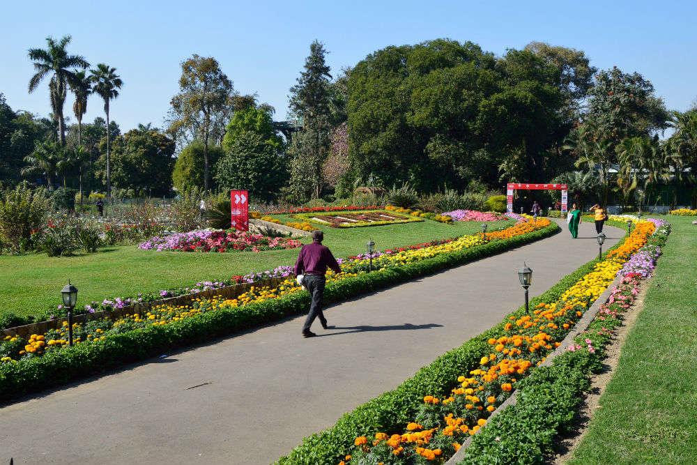 The Agri-Horticultural Garden