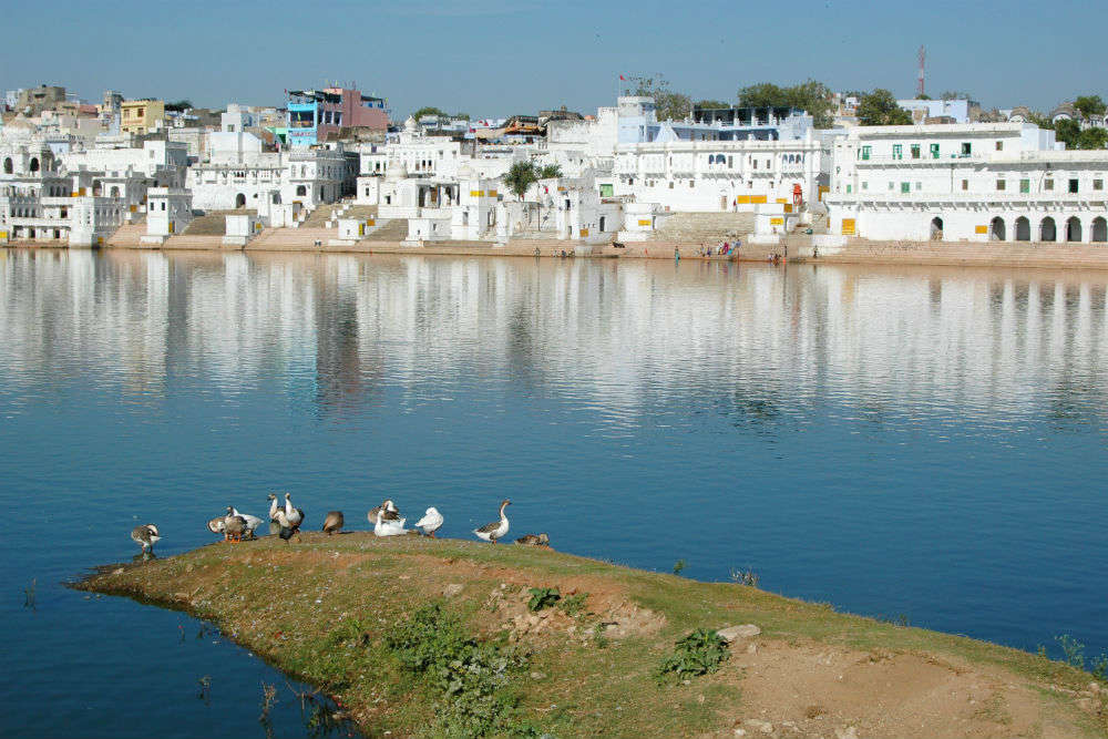 12 things you must do when in Pushkar