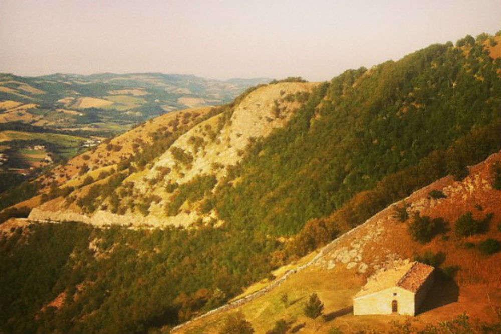 Go truffle hunting in Acqualagna