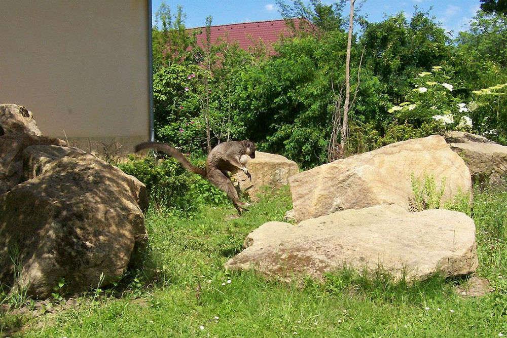 Pilsen Zoological and Botanical Garden