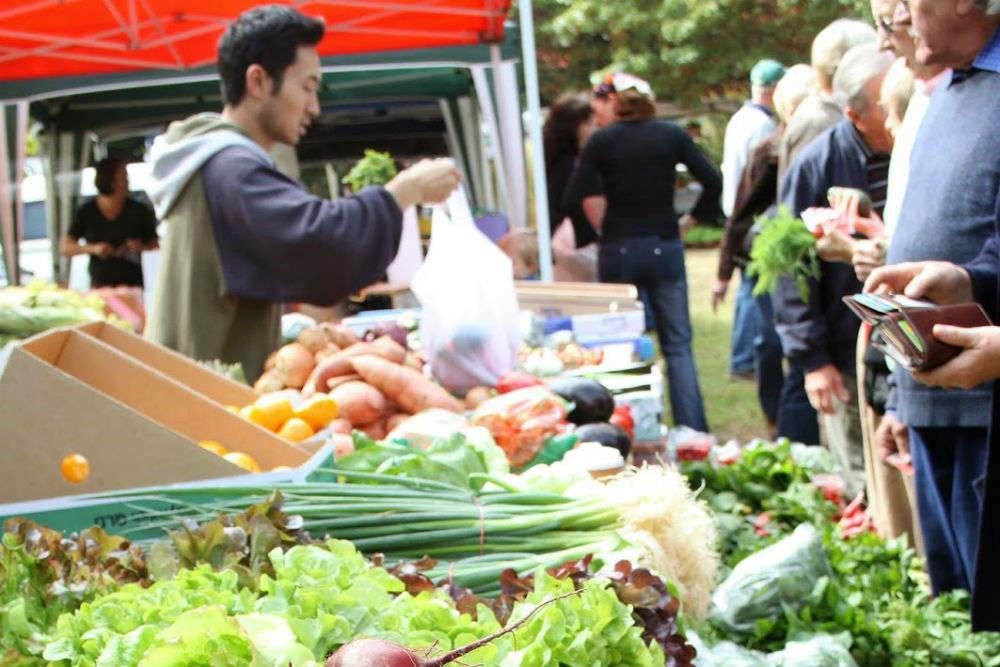 Vegetable shopping at Noosa farmers' market