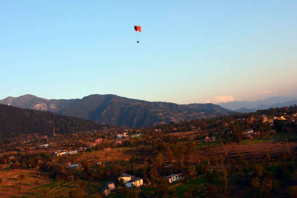 8 things to do in and around Palampur