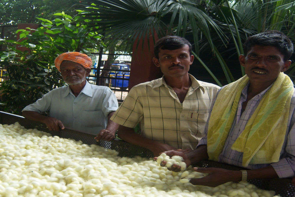Visit the Government Silk Weaving Factory