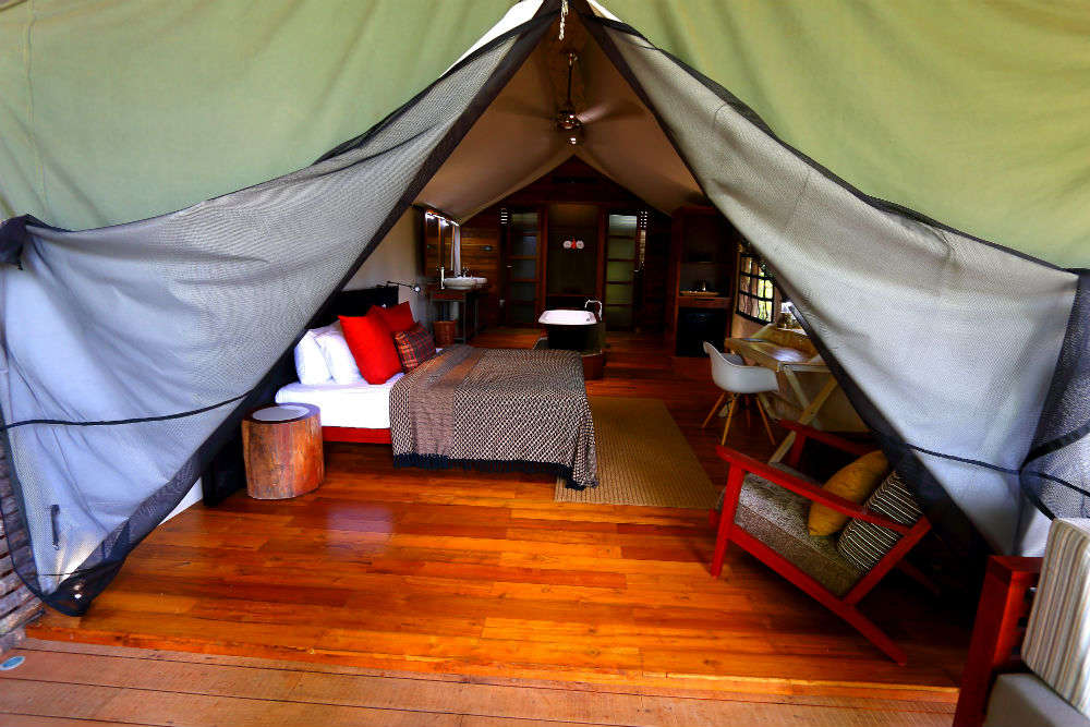 Kaav Safari Lodge in Kabini effortlessly casts a spell on visitors