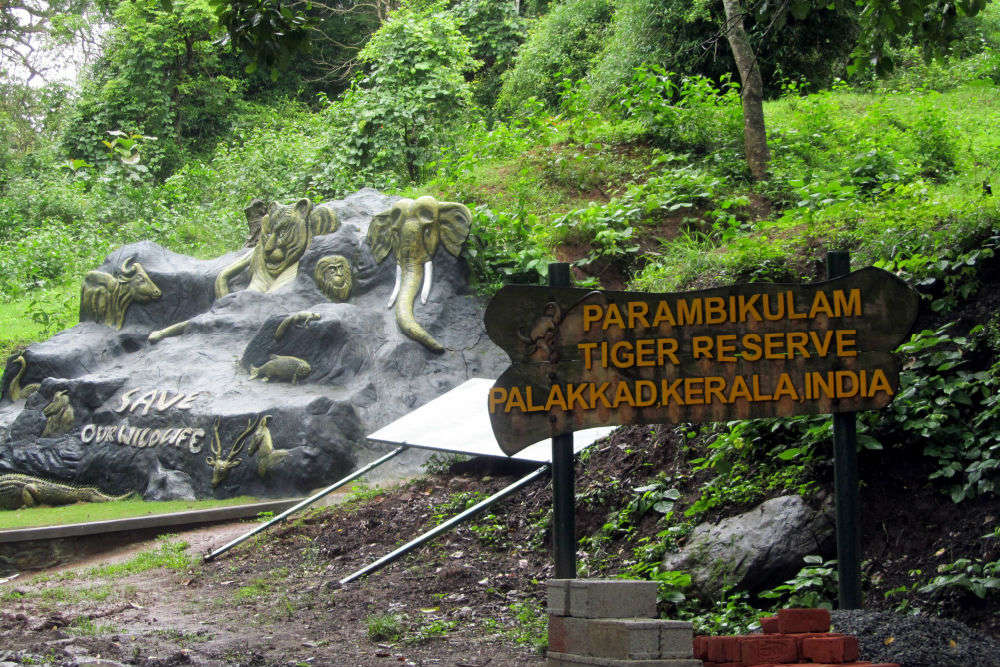 Parambikulam National Park